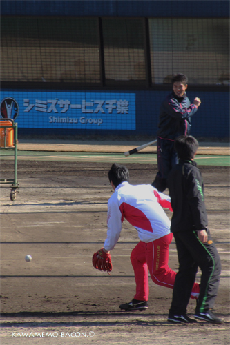 新垣勇人の画像 p1_3